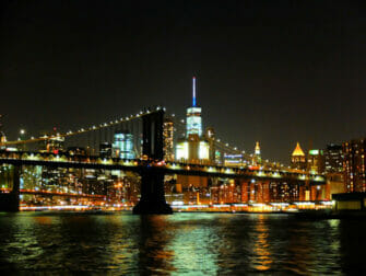 Cruise med middag i New York - Skyline