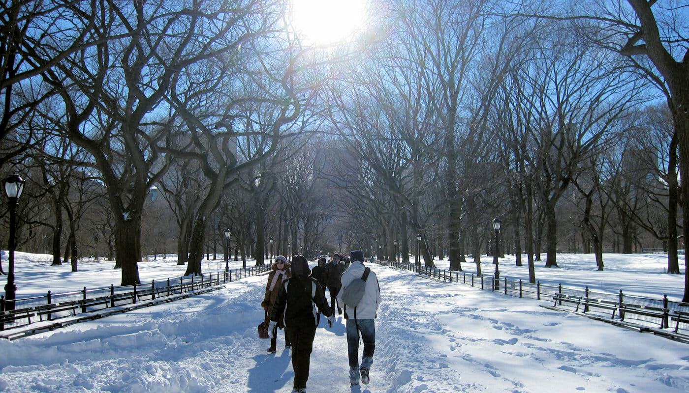 Vaeret i New York - Vinter