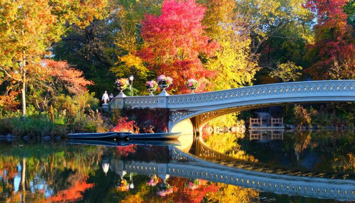 Central Park - Bow Bridge