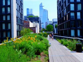 Parks i New York - Sommer i High Line Park