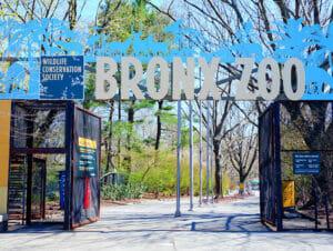 Bronx Zoo i New York