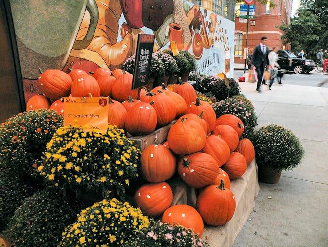 Halloween i NYC - Gresskar