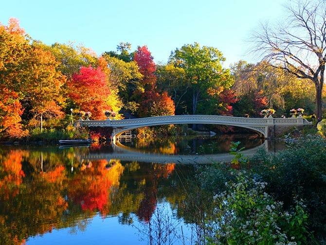 Guidet tur til steder for filminnspilling i Central Park