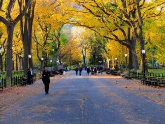 Guidet tur til steder for filminnspilling i Central Park - The Mall