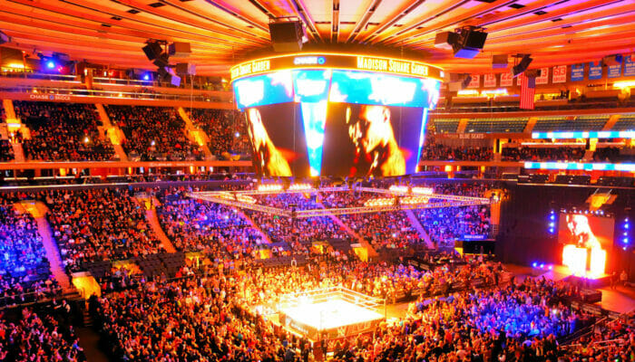 Madison Square Garden i New York - Inne