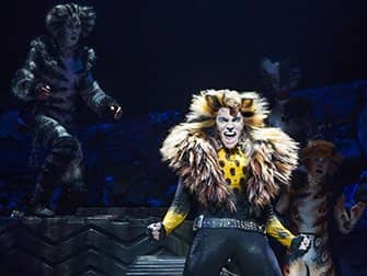 Cats Broadway tickets - Solo