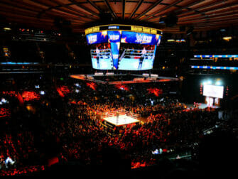 WWE wrestling i New York tickets - Publikum