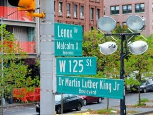 Martin Luther King Jr  Day in New York 1