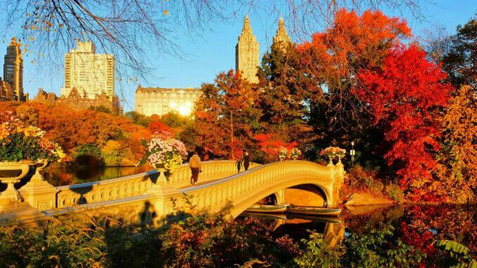 Høst i Central Park – Zoom