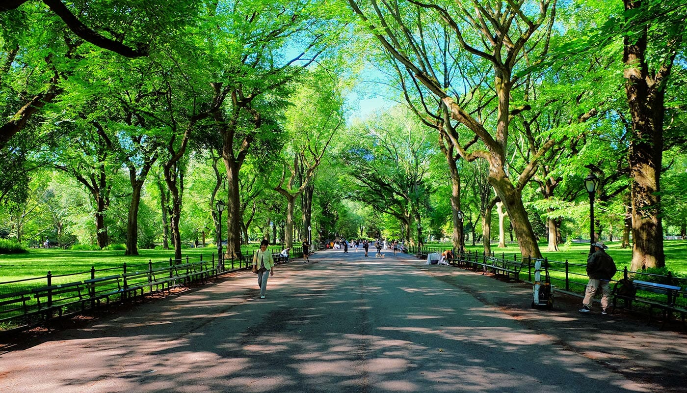 Morsdag i New York - The Mall i Central Park