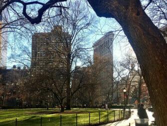 Flatiron Building i New York Madison Square Park
