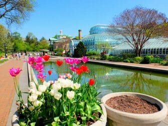 Botaniske hager i New York New York - Brooklyn Botanic Garden