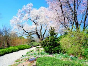 Botaniske hager i New York - New York Botanical Garden i The Bronx